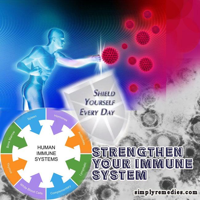 nutriferon-strengthen-immune-system