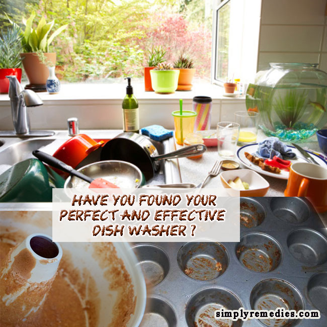 shaklee-dishwash-dishes