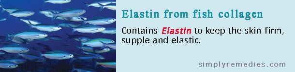 shaklee-collagen-elastin-fish