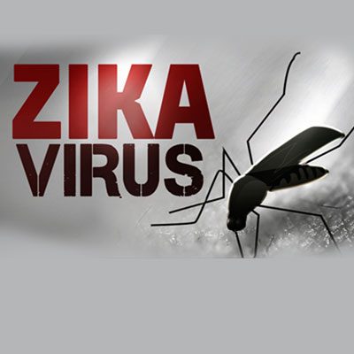 Shield yourself with healthy immune system to fight Zika virus