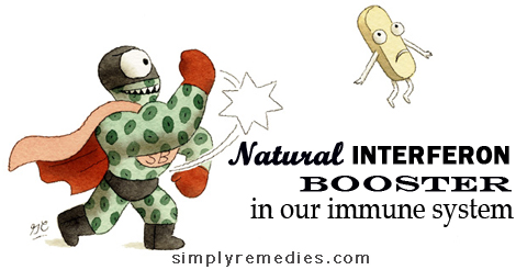 nutriferon-booster-in-our-immune-system